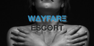 First Class Escort Girls Berlin: wayfare-escort.de